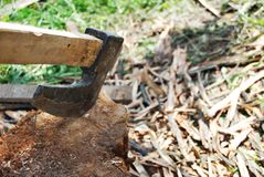 Axe in the stump Stock Images