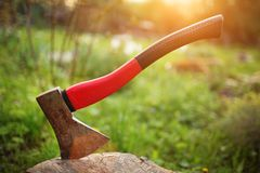 Axe in stump Stock Images