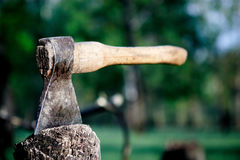 Axe in the stump Royalty Free Stock Images
