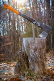 Axe in stump in fall Royalty Free Stock Image