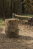 Axe in stump. In the forrest stock image