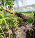 Axe in a stump Stock Photos