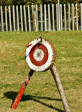 Axe on target Royalty Free Stock Images