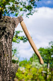 Axe in wood, outdoor view Royalty Free Stock Photo