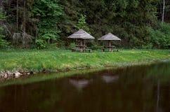 Axel på floden nära skogen Arkivfoton
