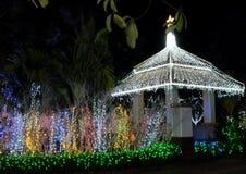 Axel som dekoreras med massor av julljus dekorativ lighting natt royaltyfria bilder