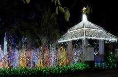Axel som dekoreras med massor av julljus dekorativ lighting natt arkivbilder