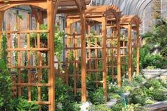 axelträdgård Royaltyfria Bilder