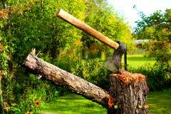 Axt auf einem Stumpf in einem Garten Lizenzfreies Stockfoto
