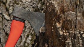 Axt in einem Baum stockfotografie