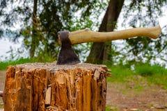 Axt im Baum und in der Natur Stockbilder