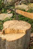 Axt im Holz lizenzfreies stockfoto