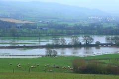 Axt-Tal überschwemmt im Winter Stockbild