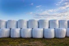 Ay准备,卷,干草卷轴,秸杆,大包,在草的一个草甸 日落 免版税图库摄影