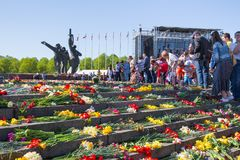 Ay 9, beröm 73 år efter världskrig 2, folk, blommar Royaltyfri Bild