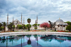 Aya Sofia Mosque for trees. Under cloudy sky. Istanbul, Turkey stock images