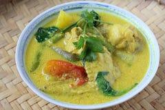 Ayam Masak Lemak- Traditional Malay Cuisine Royalty Free Stock Photo