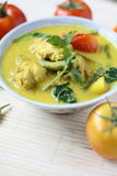 Ayam Masak Lemak- Traditional Malay Cuisine Royalty Free Stock Photography