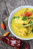 Ayam Masak Lemak- Traditional Malay Cuisine Stock Photography