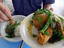 Ayam tangkap Stekt kyckling från Aceh arkivfoto