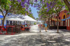 Plaza La Lota and jacaranda trees in Ayamonte, Spain royalty free stock photography