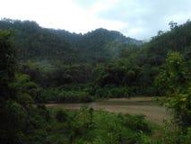 Ayampe河 库存图片