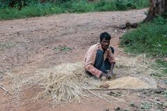 Tribal man threshes rice manually in Ayarabeedu forest, India. Ayarabeedu forest, Karnataka, India - November 1, 2013: Siting tribal man in the green forest royalty free stock photos