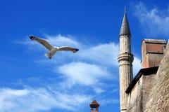 Ayasofia mosque Stock Photos