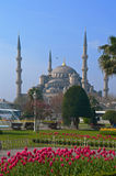 Ayasofya, İstanbul - general view Stock Photography