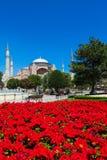 Ayasofya in Istanbul, Turkey Stock Image