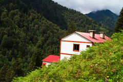 Ayder Plateau. Close up of mountain house in Ayder Plateau, Rize, Turkey Stock Image