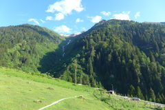 Ayder Plateau Royalty Free Stock Images