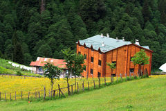 Ayder Plateau. Mountain houses with large lawn area in Ayder Plateau, Rize, Turkey Stock Images