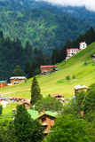 Ayder Plateau. Mountain houses in Ayder Plateau, Rize, Turkey Stock Photo
