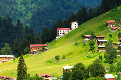 Ayder Plateau. Mountain houses in Ayder Plateau, Rize, Turkey Stock Image