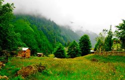 Ayder Plateau. There are very amazing in Rize in Turkey such as Ayder Plateau Royalty Free Stock Photo