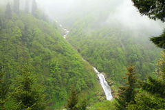 Ayder Valley. In Black Sea,Rize,Turkey Royalty Free Stock Photography