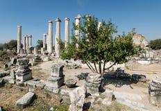 Aydin, Τουρκία - 9 Οκτωβρίου 2015: Οι αρχαίες καταστροφές Aphrodisias σε Geyre, Aydin Στοκ Εικόνα