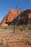 Ayers rock Royalty Free Stock Photos