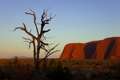 Ayers Rock and Olgas Royalty Free Stock Photos
