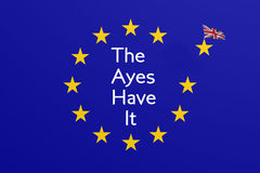 The Ayes Have It Stock Images