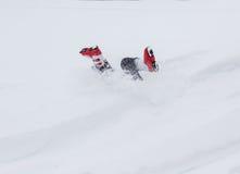 Ayez l'amusement dans la neige image libre de droits