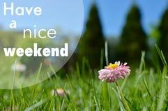 Ayez une affiche de motivation de citation de week-end agréable Photo libre de droits