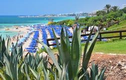 Ayia Napa, Cypr obraz royalty free