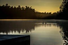 Aylmer安大略加拿大:泉水保护地区:2017年4月2日:两只鹅游泳对太阳上升在一个镇静春天早晨 库存图片