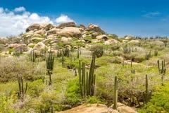 Ayo Rockowa formacja w Aruba zdjęcia stock