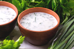 Ayran with fresh herbs. Traditional Turkish yoghurt drink. Royalty Free Stock Photography