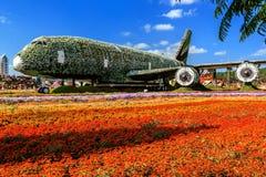 Ayrbas de los aviones de la escultura del paisaje de flores Fotos de archivo