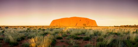 Ayres Rock Uluru Panorama Stock Image