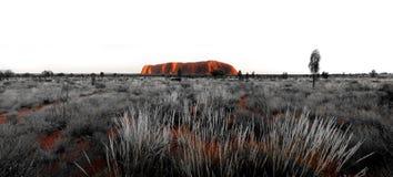 Ayres Rock Uluru Panorama. In Australia Royalty Free Stock Photography